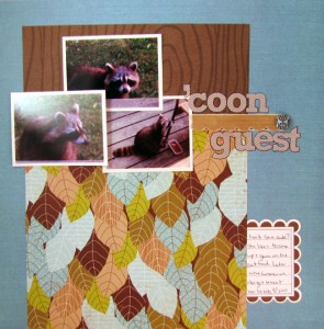 coonguest