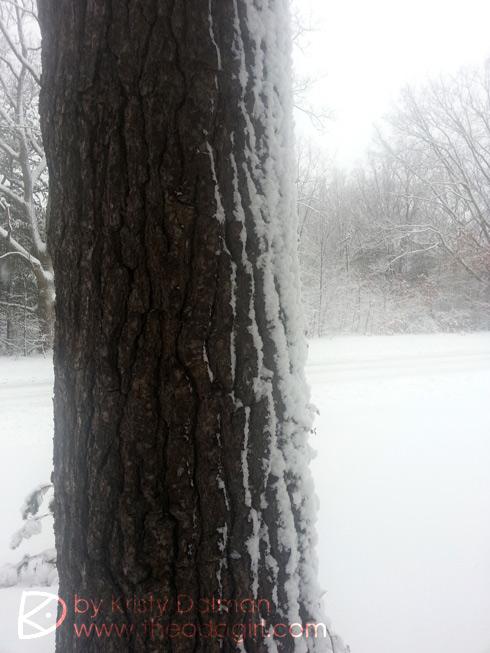 snow-lighting-5